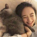 可爱de猫咪女生合影头像