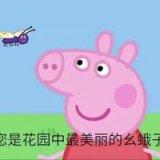 可爱的小猪佩奇表情包