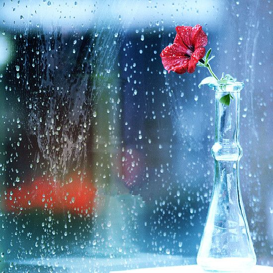 雨天 橱窗边